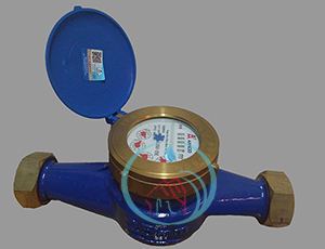 Category Water Meter Amico